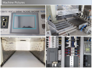 Automatic Sleeve Multi-Row Shrink Packaging Machine pictures & photos
