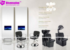 Styling Chair, Salon Chair, Barber Chair, Hairdressing Chair (Package NP1099)