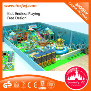 Children Indoor Play Equipment Playground for School pictures & photos