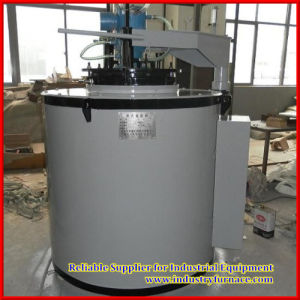 Chinese Nitriding Furnace for Sale pictures & photos
