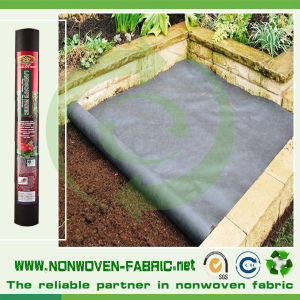 Favorable Anti-UV Nonwoven Fabric for Cover Crops pictures & photos