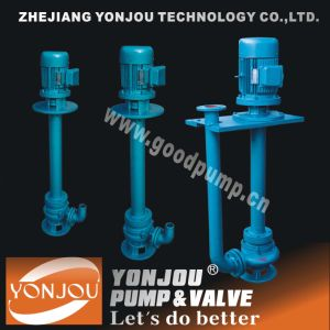 Yw Semi-Submersible Slurry Pump pictures & photos