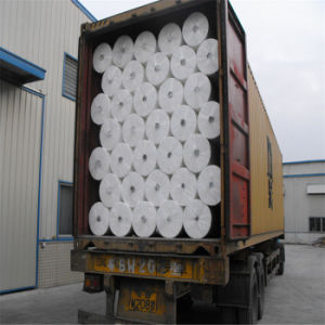 PP Nonwoven Spunbonded Raw Material Fabric pictures & photos
