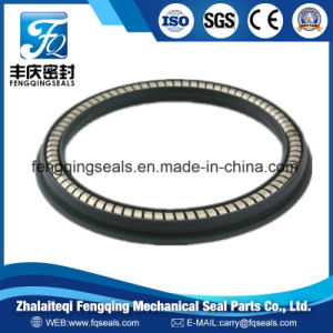 Auto Pump Energized PTFE Rubber Hydraulic Spring Seals pictures & photos