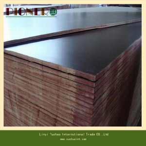 Film Faced Plywood for Algeria Market pictures & photos