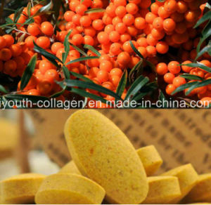 Health Food, Top 100% Natural Wild Seabuckthorn Bee Pollen Chewable, No Antibiotics, No Pathogenic Bacteria, No Heavy Metal, Antiaging, Anticancer, Prolong Life pictures & photos