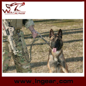Military Training Dog Strap Belt Tactical Airsoft Dog Leash Sling pictures & photos