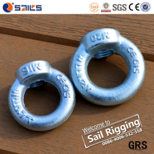 Lifting Zinc-Plated DIN582 Eye Nut pictures & photos