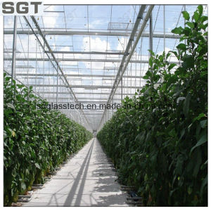 4mm Ultra Clear Tempered Glass for Green House pictures & photos