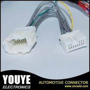 Standard Molex Connector Avss Wire Harness Manufacturer pictures & photos