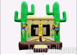 2015 New Design Inflatabe Bouncer, Commercial Inflatable Combo, Inflatable Castle Combo to Australia pictures & photos