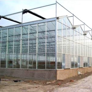 The High Quality Multispan Glass Greenhouse for Sale pictures & photos