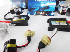 5202 35W 6000k Xenon Lamp Car Accessory with Red and Black Wire pictures & photos