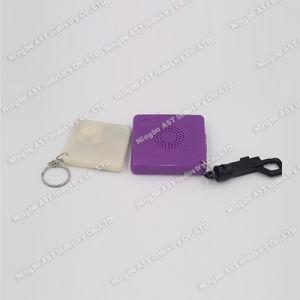 Digital Keychain, MP3 Keychain, USB Keychain pictures & photos