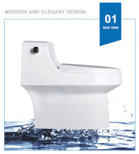 Weidansi Ceramic Siphonic S-Trap One Piece Toilet (WDS-T6121) pictures & photos