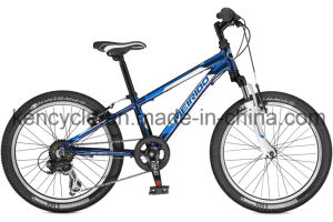 20inch 6speed MTB Bike/Mountain Bikes/Mountain Bicycles/Suspension Bike/Mountain Bike Sale pictures & photos