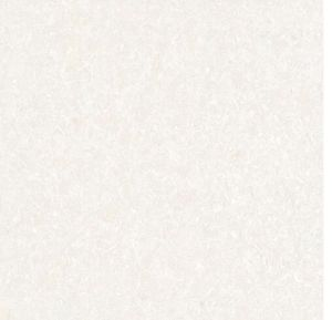 600*600 Porcelain Full Body Polished Floor Tile