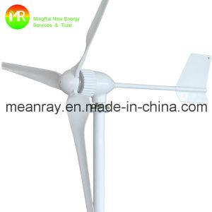 220 Volt Wind Generator 1kw Mini Wind Power Generator pictures & photos