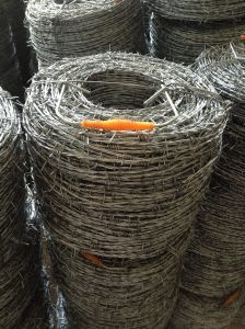 Hot Heavy Dipped Galvanized Barbed Wire pictures & photos