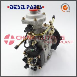 Fuel Injection Pump for JAC OEM Wf-Ve4/11f1900L002 pictures & photos