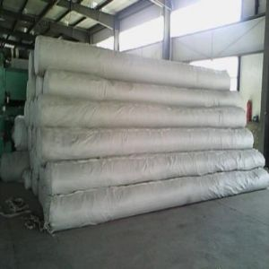 600GSM Polyester Spunbond Non Woven Geotextile pictures & photos