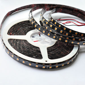 Black PCB 60LEDs/M Waterproof SMD5050 RGB LED Strip Light pictures & photos