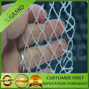New Design and High Quality Bird Net pictures & photos