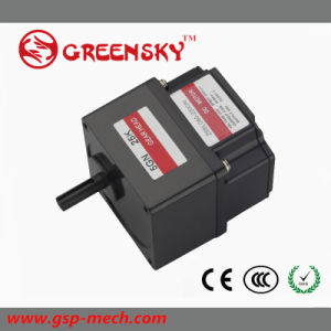 GS 12V/24V 80W 60mm Brushless DC Gear Motor for Electric Machine pictures & photos