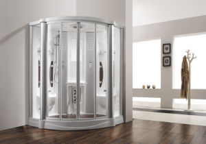 Monalisa Freestanding Acrylic Steam Shower Enclosure with Radio (M-8210) pictures & photos