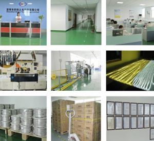 5050 144LEDs Flexible Waterproof LED Strip Light Ce RoHS Certification pictures & photos