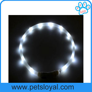 Pet Dog Accessory, LED Dog Collar of Rechargeable (HP-111) pictures & photos