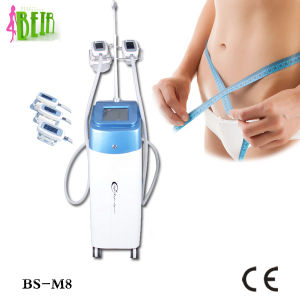 Beir Good Quality Cryolipolisis Freezing Fat Machine for Salon and Home Use pictures & photos