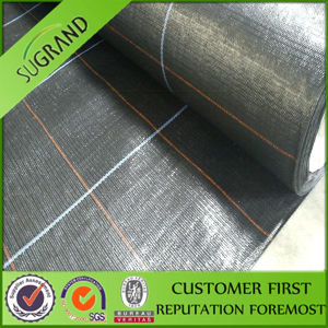 Factory Supply Weed Control Mat/Ground Cover Mesh Fabric pictures & photos