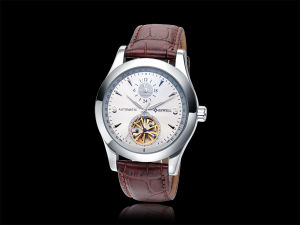 High Grade Mechanical Watch for Men Cheap Automatic Watch waterproof pictures & photos