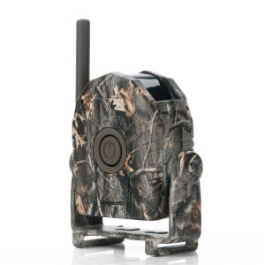 Buck Alert Motion Detector Set System pictures & photos