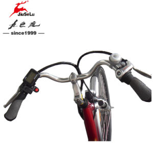 CE EN15194 700C 250W Brushless Motor Red City E-Bikes (JSL036A) pictures & photos