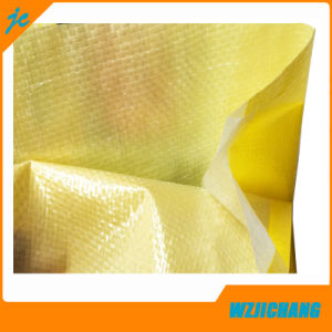 China BOPP Laminated PP Woven Bag pictures & photos