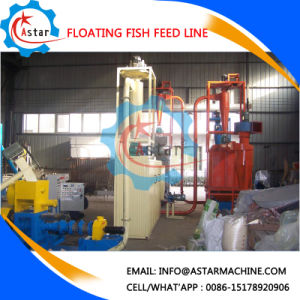 Hot Sell in Nigeria Floating Fish Feed Pellet Making Line pictures & photos