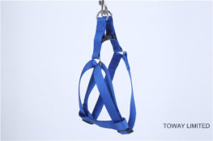 Design Dog Lead Plain Basic Pet Nylon Harness with Leash pictures & photos