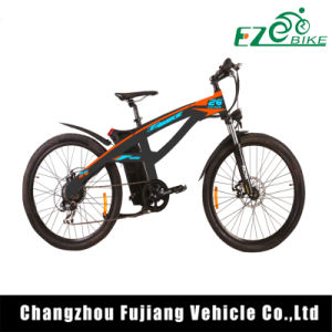 Changzhou Green Power Mag Wheel E City Bike pictures & photos