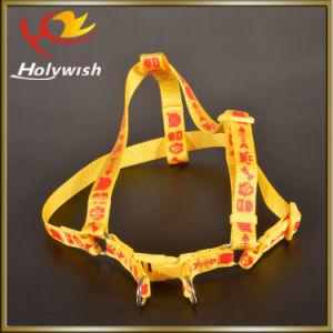 Silkscreen Printed Dog Collars and Dog Leash for Promotion