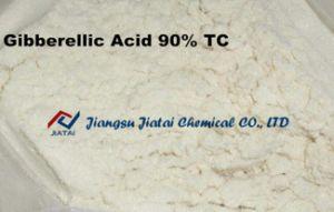 Gibberellic Acid 90% Tech, Gibberellic Acid Ec, Gibberellins, Ga3