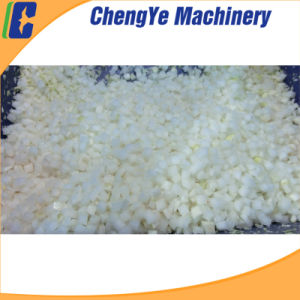 Vegetable Cutter/Cutting Machine with Ce Certification Qd2000 pictures & photos