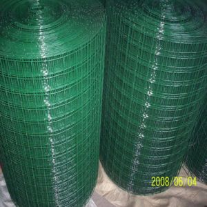 PVC Plastic Coated Welded Wire Mesh Rolls pictures & photos