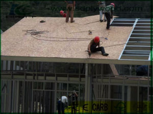 OSB3 for Roof as Building Materials in Construction pictures & photos