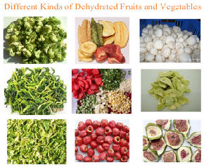 Vegetable Drying Machine, Fruit Dehydrator pictures & photos