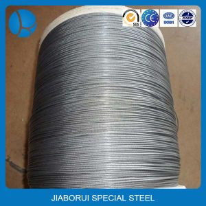 China Supplier Galvanized Stainless Steel Wires Rope pictures & photos