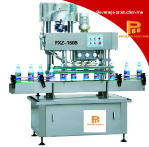 Automatic Straight Line Type Capping Machine pictures & photos
