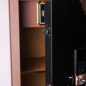 Security Home Safe Box with Digital Lock-Zhiya Series Fdx A1/D 150 pictures & photos