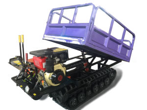 Special Design Agriculture Mini Transporter pictures & photos